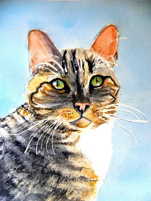Susan  Clark - Farm Cat