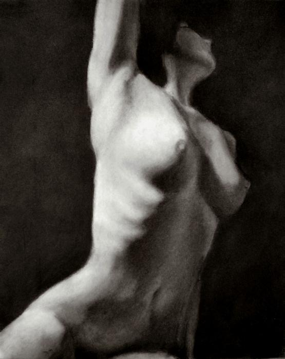 Female Nude Study Drawing - Female Nude Study Fine Art Print - Jes Ewers