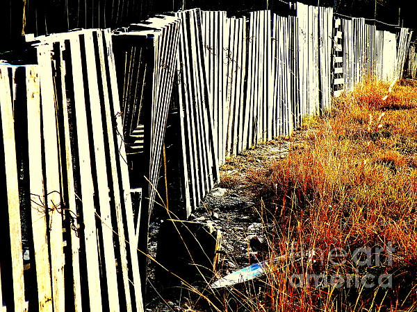 Fence Abstract Print by Joe Jake Pratt