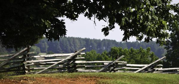 Fence At Appomattox Print by Teresa Mucha