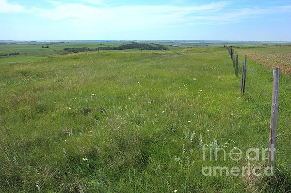 Fence On The Alberta Prairie Print by Jim Sauchyn