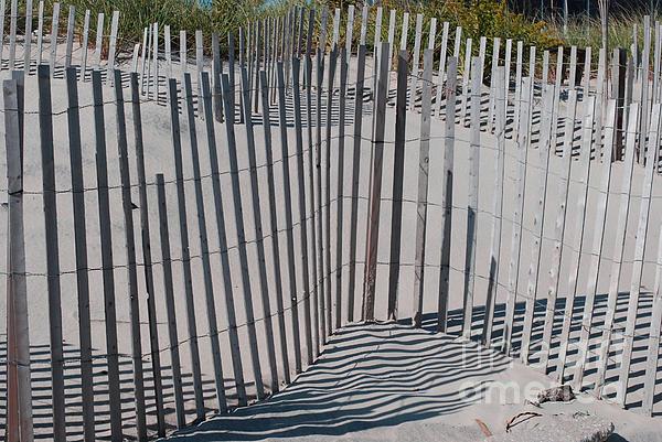 Andrea Simon - Fence Patterns II