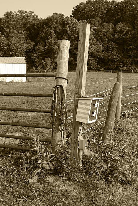 Fence Post Print by Jennifer Lyon