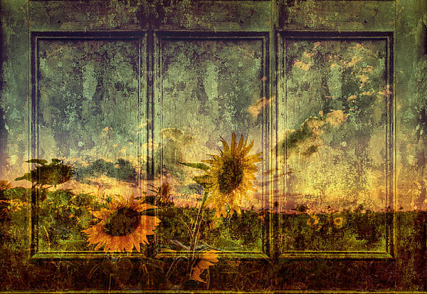 Fields Of Sun Digital Art by Leapdaybride Photographic Art ...