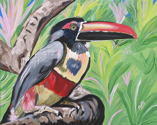 Phyllis Kaltenbach - Fiery billed Aracari based on a painting by Larry Linton
