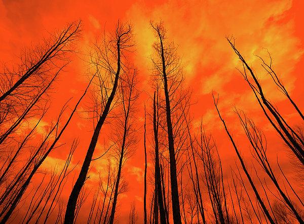 KM Corcoran - Fire Sky