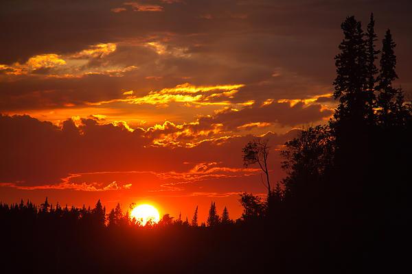 Darren Langlois - Fire Sun