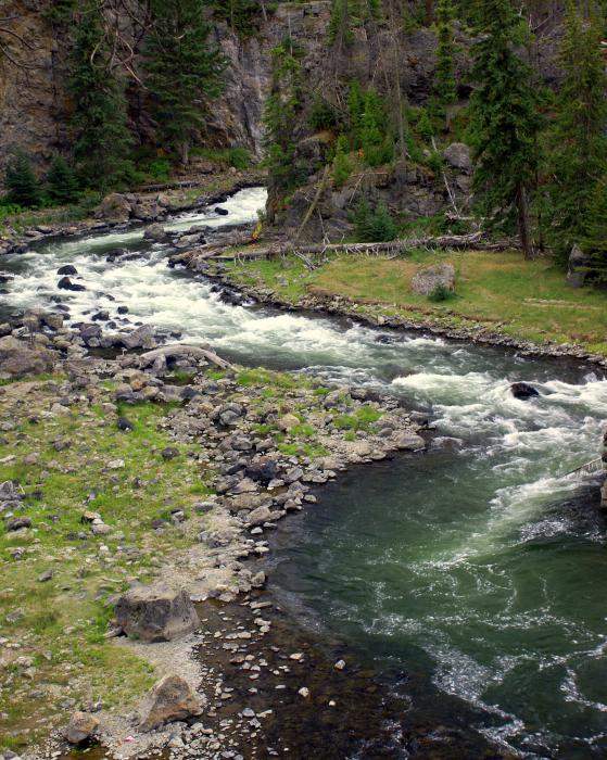 Firehole River 2 Print by Marty Koch