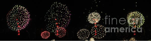 Firework Lifecycle 3 Print by Meandering Photography