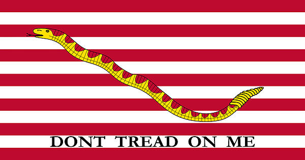 First Navy Jack Print by War Is Hell Store