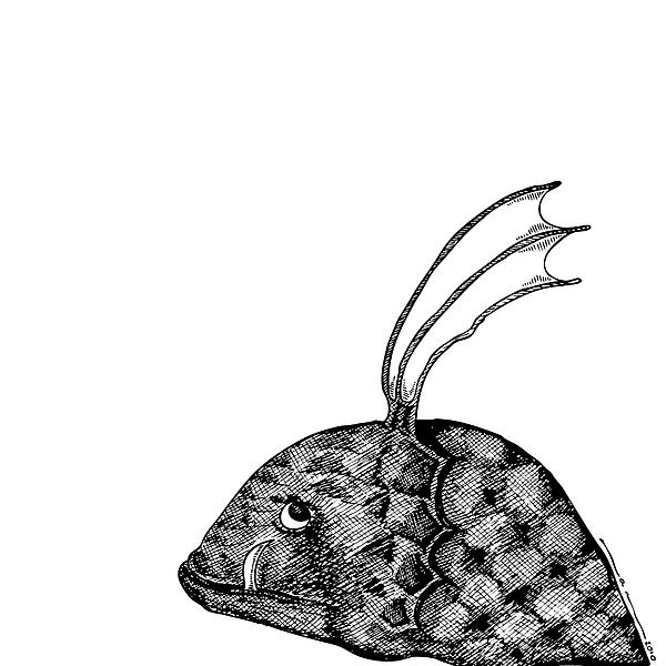 Fish Beast Print by Karl Addison
