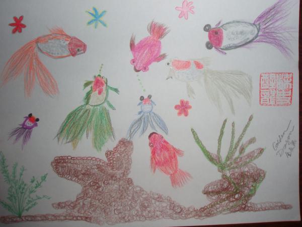 Fish Tank Drawing