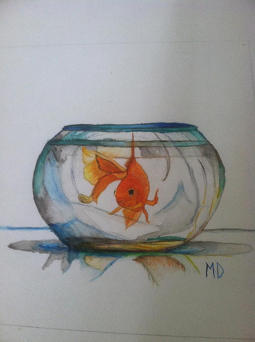 post fishbowl reflection Life in a fishbowl or living in a fishbowl could mean two things and i (total internal reflection) but i know you always read my every blog-post.