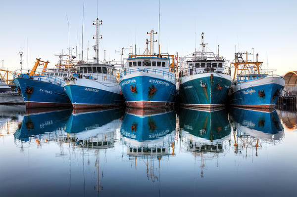 Lori Sharkey - Fishing Boat Line-up