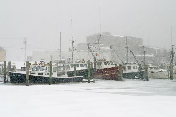 Fishing Boats During Winter Storm Sandwich Cape Cod Print by Matt Suess