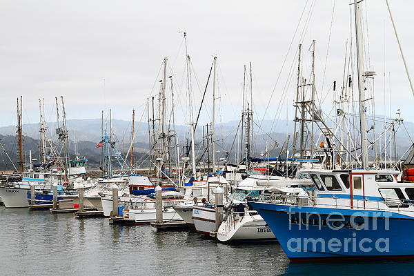 Fishing Boats In Pillar Point Harbor At Half Moon Bay California . 7d8208 Print by Wingsdomain Art and Photography