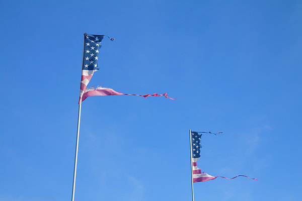 Flags Print by Phil Hill