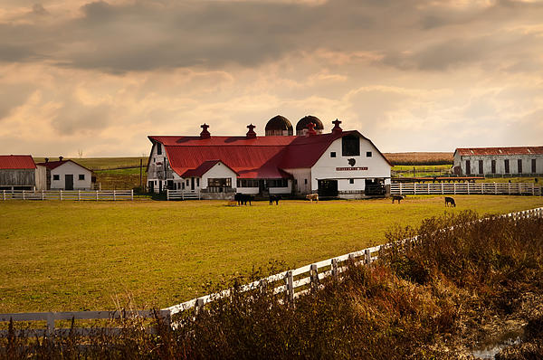 Flemingsburg Farm Ky Photograph