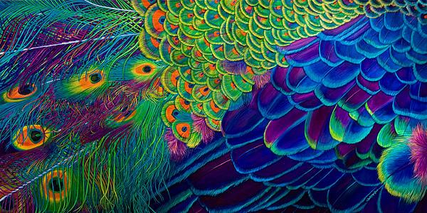 Lisa Rodriguez - Flight of Fantasy