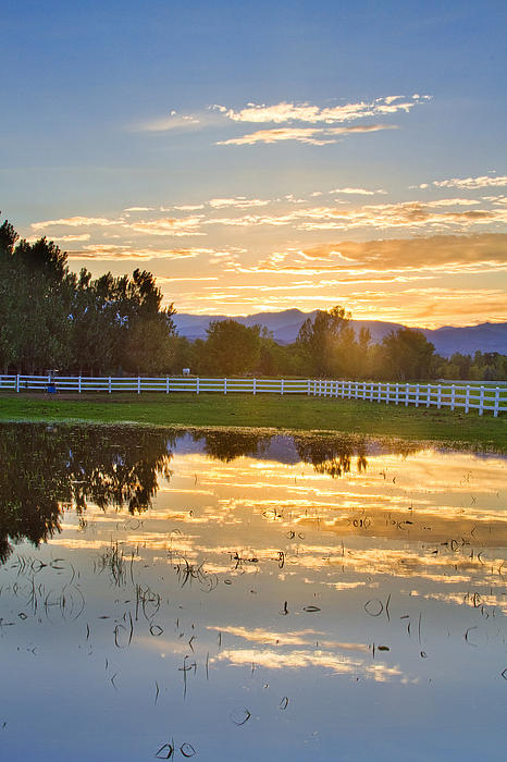 James BO  Insogna - Flooded Pasture Country Sunset