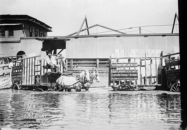 Flooding On The Mississippi River, 1909 Print by Library of Congress