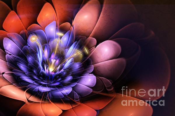 Floral Flame Print by John Edwards