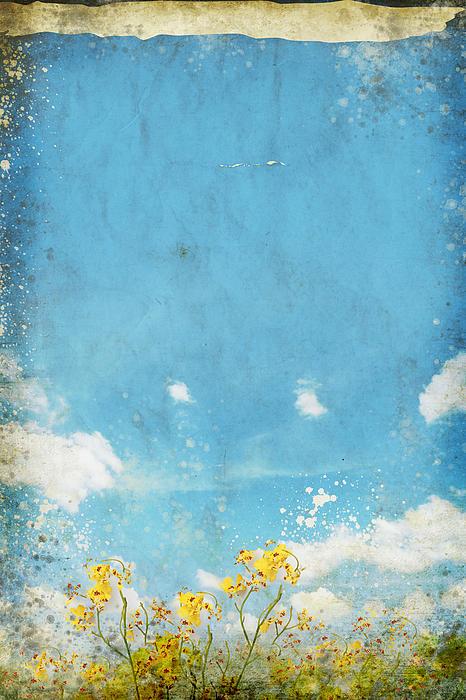 Floral In Blue Sky And Cloud Print by Setsiri Silapasuwanchai