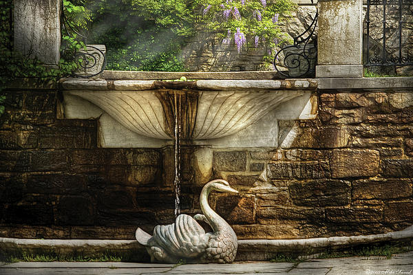 Flower - Wisteria - Fountain Print by Mike Savad
