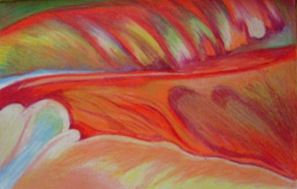 Flower Detail Print by Fanny Diaz