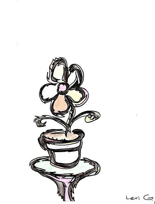 Flower  Print by Levi Glassrock