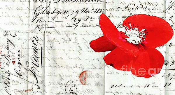 Flower Love Letter Print by adSpice Studios