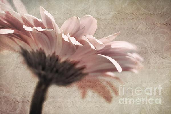 Flower Poetry Print by Viaina