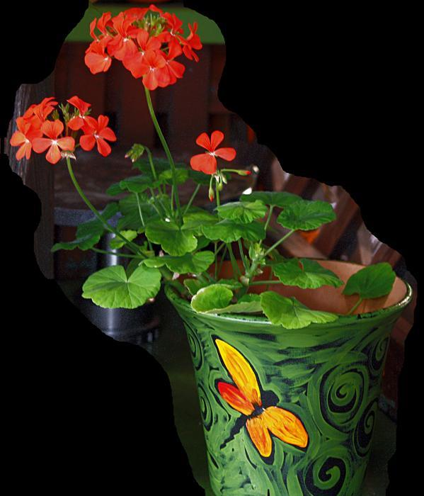 Flowerpot Print by Robert Trauth