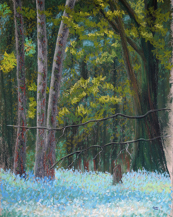 Flowers In The Wood Print by James Geddes