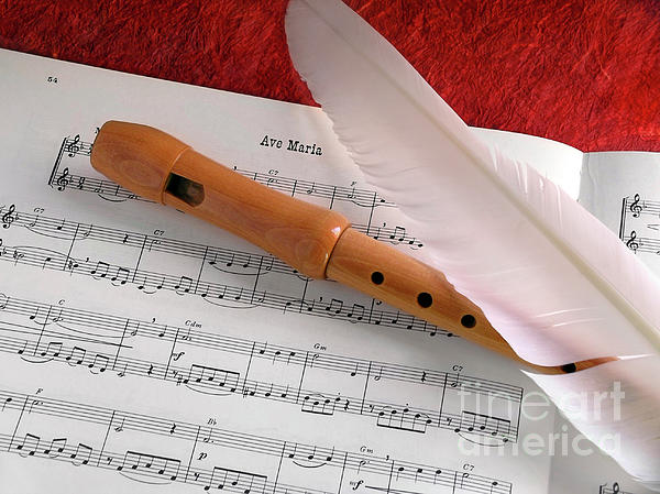 Flute And Feather Print by Carlos Caetano