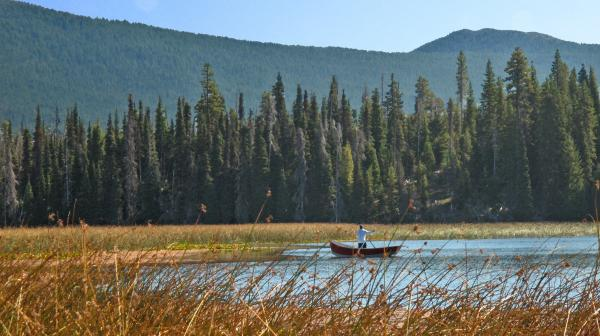 Fly Fishing Hosmer Lake Larry Darnell Painting