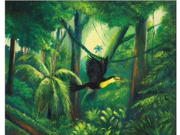 Flying Tucan By Jean Pierre Bergoeing