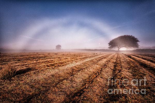 Fog Bow Print by John Farnan