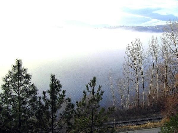 Fog On Wood Lake Print by Will Borden