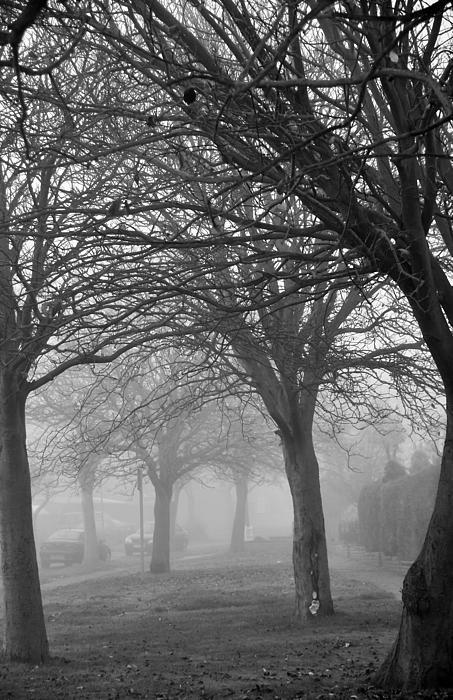 Svetlana Sewell - Foggy Alley Way