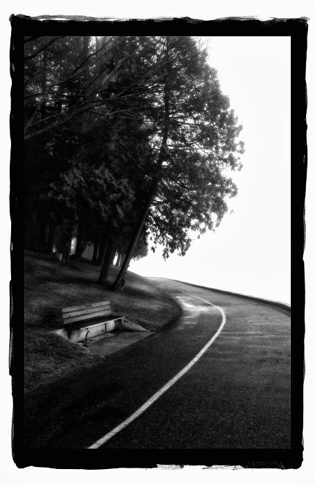 Foggy Day V-4 Print by Mauro Celotti