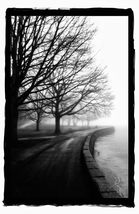 Foggy Day V-5 Print by Mauro Celotti