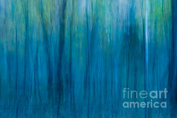 Foggy Morning Blues Print by Paul W Faust -  Impressions of Light