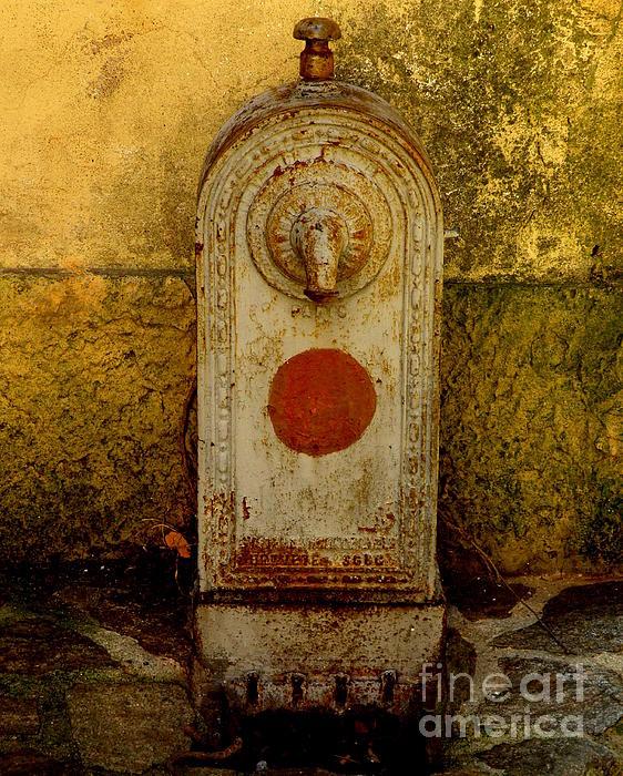 Fontaine D'eau Print by Lainie Wrightson