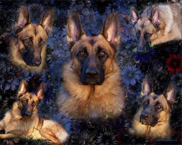 Forrest With Flowers - German Shepherd Dog Print by Angie Tirado
