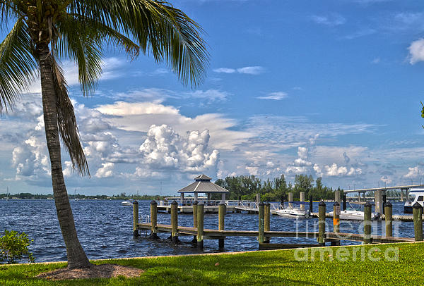 Fort Myers Dock Print by Timothy Lowry