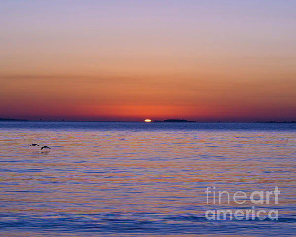 Fort Sumter Sunrise Print by Al Powell Photography USA