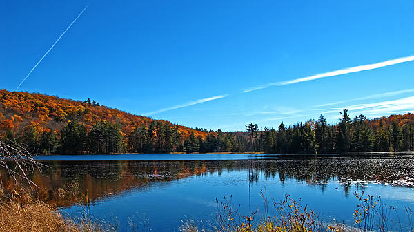 Fortune Lake And Swampland W Airplane Contrails - Fall Forestscape Reflections - The Great Outdoors Print by Chantal PhotoPix