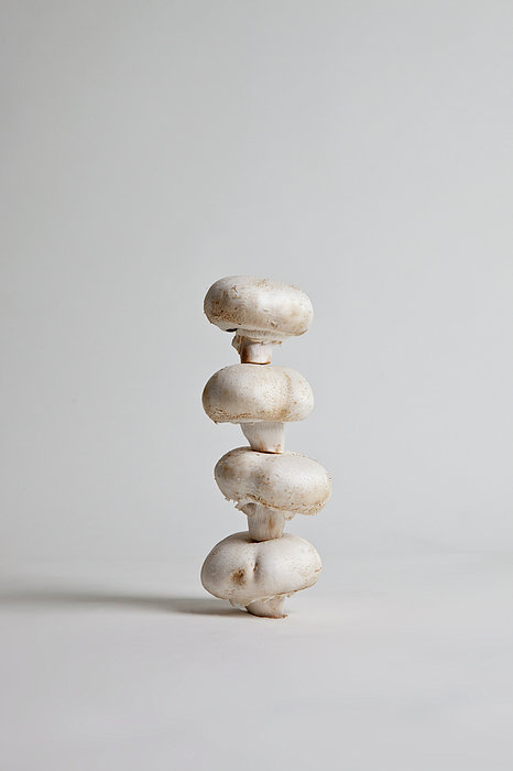Four Mushrooms Arranged In A Stack, Studio Shot Print by Halfdark