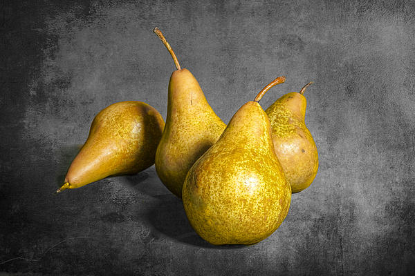 Randall Nyhof - Four Pears on Gray